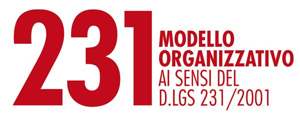 webinar-modello-organizzazivo-231-01